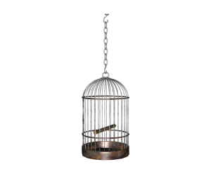 long_hanging_birdcage_cut_out_by_madetobeunique-d3arfkt