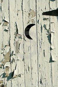 moon door